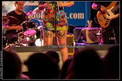 alexx-the-mooonshiners-festival-blues-availles_18295182244_o