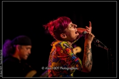alexx-the-mooonshiners-festival-blues-availles_18295377364_o