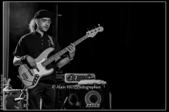 alexx-the-mooonshiners-festival-blues-availles_18920782921_o