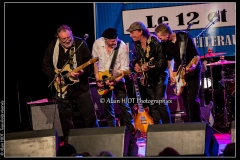 fred-chapellier-friends-festival-blues-availles_18307525914_o