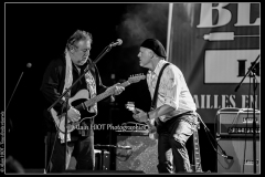 fred-chapellier-friends-festival-blues-availles_18310033473_o