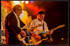 fred-chapellier-friends-festival-blues-availles_18743020228_o