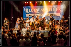 fred-chapellier-friends-festival-blues-availles_18743637019_o