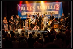 fred-chapellier-friends-festival-blues-availles_18743717699_o