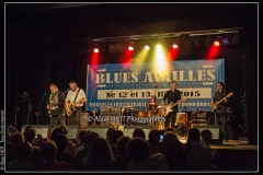 fred-chapellier-friends-festival-blues-availles_18744955709_o