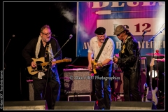 fred-chapellier-friends-festival-blues-availles_18903856436_o
