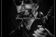 weavil blues seine 2014