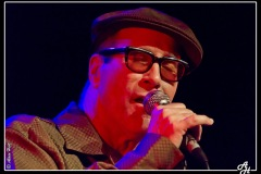 mark-hummel-the-blues-survivors-scne-jean-roger-caussimon_7210228796_o