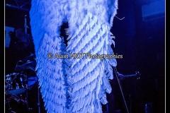 in-volt-guest-manu-lanvin-new-morning_15687067646_o