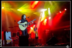 pat-mc-manus-cahors-blues-festival_7646578854_o