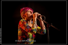 alexx-the-mooonshiners-festival-blues-availles_18295670394_o