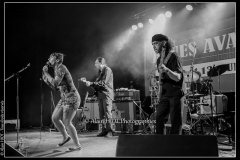 alexx-the-mooonshiners-festival-blues-availles_18297548523_o