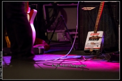 jerome-pietri-festival-blues-availles_18277392303_o