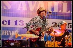 jerome-pietri-festival-blues-availles_18897294085_o