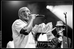 hommage-a-la-route-du-blues-cahors-blues-festival_14606019878_o