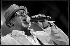 hommage-a-la-route-du-blues-cahors-blues-festival_14606496679_o