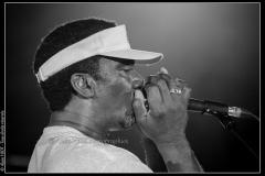 hommage-a-la-route-du-blues-cahors-blues-festival_14606778937_o