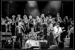 hommage-a-la-route-du-blues-cahors-blues-festival_14789715201_o