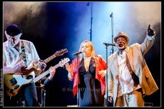 hommage-a-la-route-du-blues-cahors-blues-festival_14792859415_o