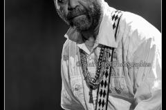 otis-taylor-cahors-blues-festival_14562138939_o
