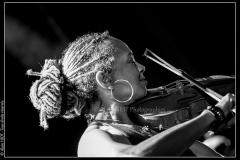 otis-taylor-cahors-blues-festival_14745555561_o