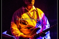 otis-taylor-cahors-blues-festival_14748372072_o