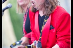 vigon-les-rolling-dominos-cahors-blues-festival-2012_7716026700_o