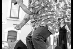karl-w-davis-the-sweetpeas-cahors-blues-festival_14548597390_o
